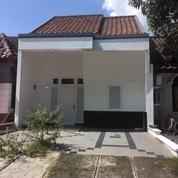 Rumah Modern Harga Terjangkau Jelita Alam Sutera