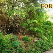 Tanah Untuk Villa Di Jl. Raya Batu Belig