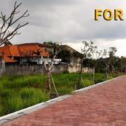 Tanah 3,5 Are Untuk Villa Di Umalas Lestari