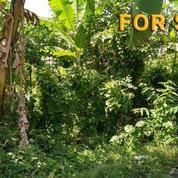 Tanah 10 Are Untuk Villa Di Dekat Echo Beach Canggu