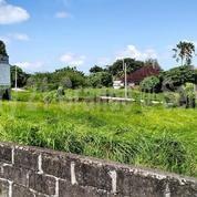 Tanah 20 Are Untuk Villa Di Batu Bolong Canggu