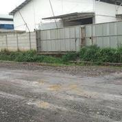 Gudang Multiguna Sigma Kartika Gunung Sindur Bogor