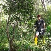 Investasikan Tanah Seluas 3,5 Ha Kebun Cengkeh, Coklat Mengkendek Toraja Sulawesi-Selatan