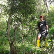 Heru Ada Tanah Desa Makendeng Tanah Toraja Sulwesi-Selatan.