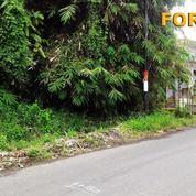 Di Tanah 6 Are Untuk Villa Di Singakerta Ubud