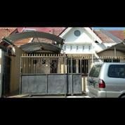 Rumah Terawat Murah Mulyosari Prima