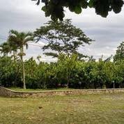 Villa Pasir Kunci Cigending