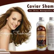 Caviar Shampoo - Sampo Kuda Original
