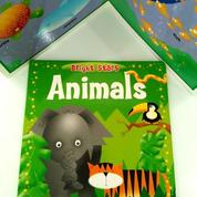 Buku Animals Boardbook Anak Impor