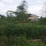 Tanah Yang Masih Murah Di Medan Kota