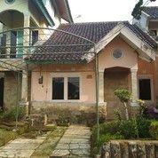 Villa Puncak 500rb