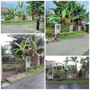 Tanah Kaveling Taman Yasmin - BOGOR