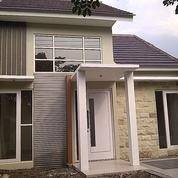 Rumah Jember Kampus Terlaris Sold Out Dua Ribu Unit Lebih