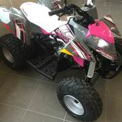 ATV Motor Polaris Industries Outlaw 110 EFI