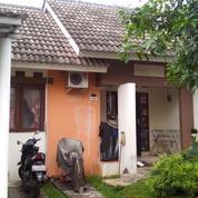 Rumah Lingkungan Asri Nuansa Perkampungan Bali