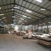 Ex Pabrik Triplek Mastrip Warugunung