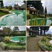 Villa'Alam Puncak