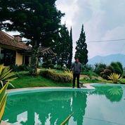 Villa Alam Puncak