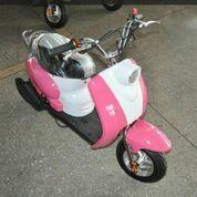 Motor Mini Scoopy Ana