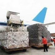 Jasa Cargo Import Dari USA Amerika Ke Indonesia