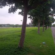Tanah Kavling Virginia Regency Pakuwon City Harga Permeter Masih NEGO