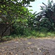 Tanah Kavling Di Witana Harja Pamulang Tangerang Selatan