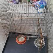 Kandang Kelinci-Kucing-Anjing, Bisa Dilipat ( Perlu Pengecatan )