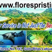 Paket Wisata Murah Flores-Komodo, Open Trip, Private Trip & Honeymoon Trip.