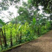Tanah Yang Cocok Untuk Perumahan Di Cileunyi