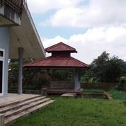 Villa Di Cisarua Bogorm