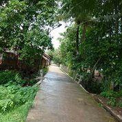 Zaman Now Ada Tanah Sawah 1054 M2 Certifikat Krawang Barat Desa Sukasari Krawang Barat.