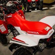 Motor Atv Honda 250 CC
