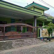 Villa Tembalang Aman Nyaman Bebas Banjir