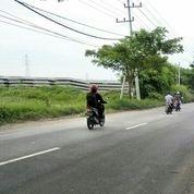 Tanah CIAMIIK Puool Tambak Cerme Gresik NOOL Jalan Provinsi