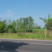 Tanah Lamongan NOL Propinsi BISA Perluasan Harga MURAAH Ciamiik