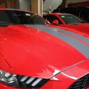 Luxury Car And Super Cat
