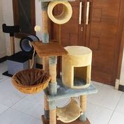 Mainan Kucing, Cat Condo, Cattoys, Cat Scratcher