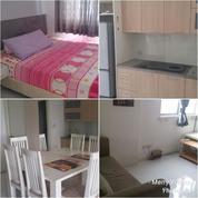Apartment East Coast Saphire Pakuwon City Full Furnish