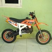Motor Mini Trill 50 Cc Medium