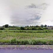 Tanah Strategis Di Jalan Raya Krasan Abiansemal Badung Bali