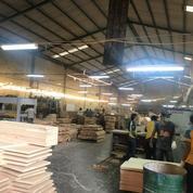 LANGKAAH Pabrik Raya Betro Sedati 2Gudang Produksi, Ciamik ADA Kantor