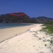 Tanah Bukit Tepi Pantai/Teluk Tampah Lombok
