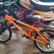 Sepeda BMX Polygon Xtrail