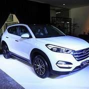 Hyundai Tucson CRDI EVGT (Diesel)