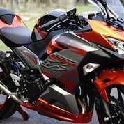 Ninja 250 2018 SE MDP Km 800 Full Ori Knalpot Akrapovic Original Plat N Probolinggo