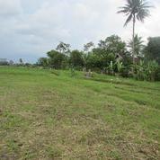 Tanah Murah Malang Sumberpucung