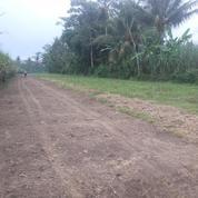 Tanah Murah Malang