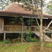 Villa Cijeruk - Bogor