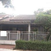 Rumah Murah Di Bintaro Kenari Sektor 2 Bintaro Luas Tanah 120 M