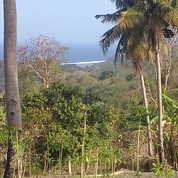 Tanah Strategis Ocean View (Pemandangan Laut)-Pantai Rua.Sumba Barat.Nusa Tenggara Timur.